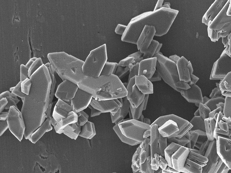 Magnified image of crystal growth