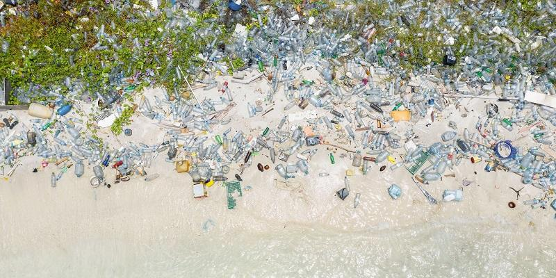 'Act now' to reduce global plastic pollution, say experts