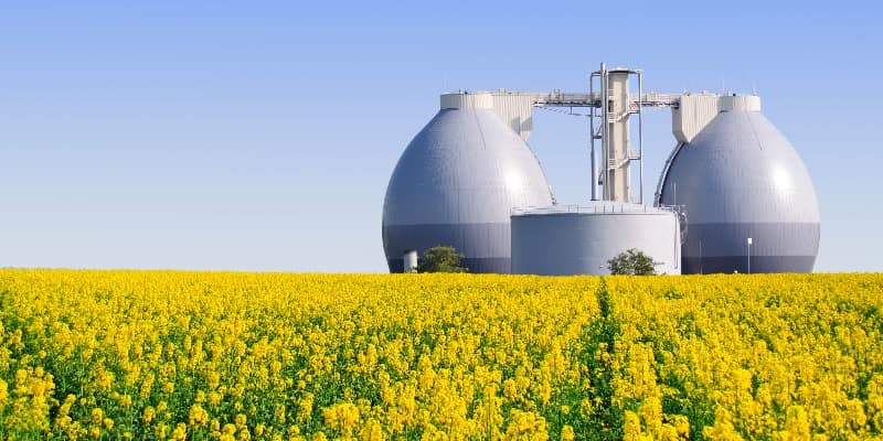 biogas plant with rapeseed field