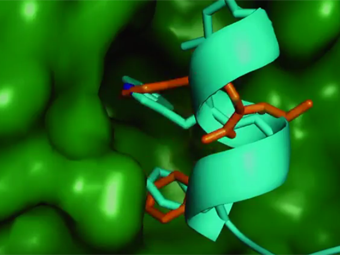£3.4 million collaborative programme addresses protein-protein interactions