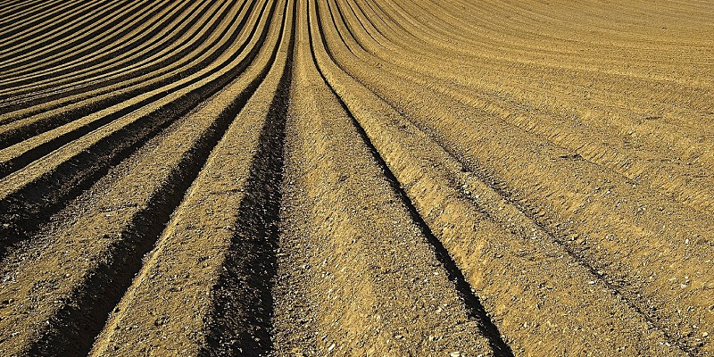 Identifying the effectiveness of soils for low-carbon technology
