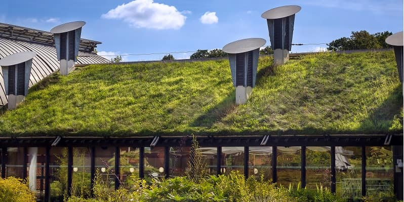 sustainable building with green roof