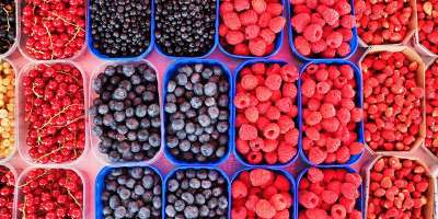 Various types of berries